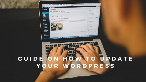 Guide on how to update your WordPress