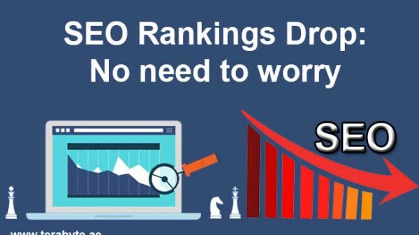 SEO-Rankings-Drop